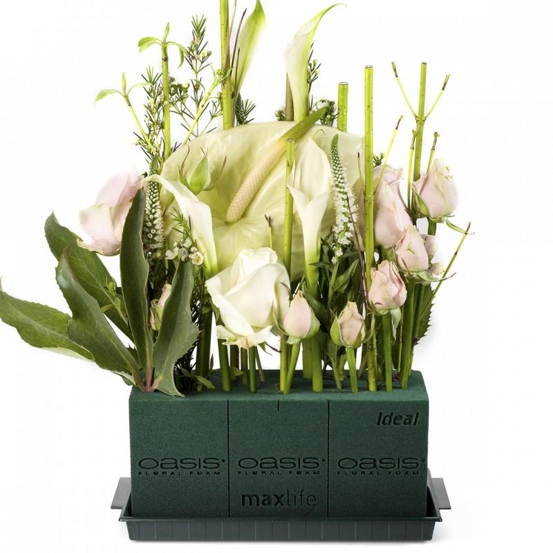 oasis ideal mousse florale pour fleurs coup es oasis. Black Bedroom Furniture Sets. Home Design Ideas