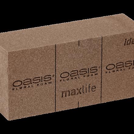 Brique OASIS® BIO