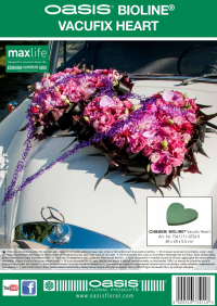 OASIS® BIOLINE® Vacufix Heart Flyer